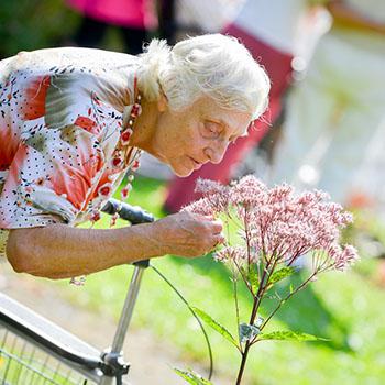 Aromapflege - Stiemerling Stationäre Betreuungs- und Pflegeangebote